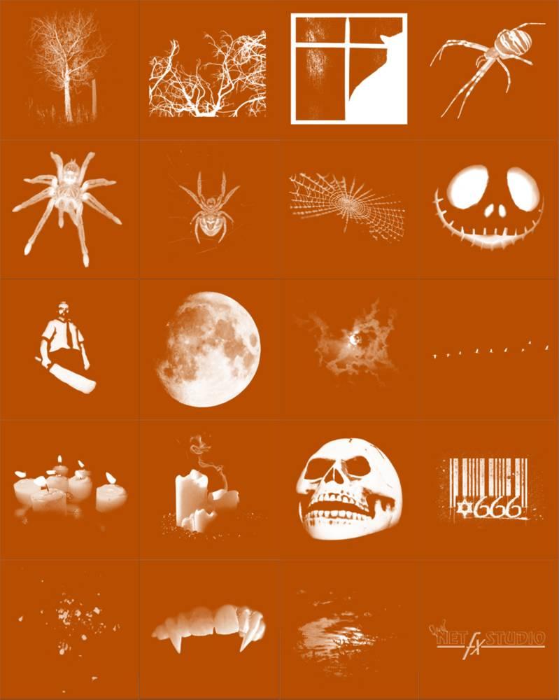 万圣节蜘蛛、南瓜脸、树枝等装扮PS笔刷下载