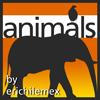 大象、乌龟、飞鸟、马、豹子、鳄鱼等PS动物剪影笔刷