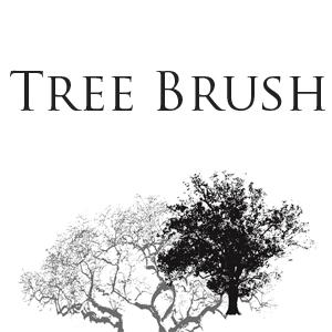 大树、树木阴影、大树剪影PS笔刷素材