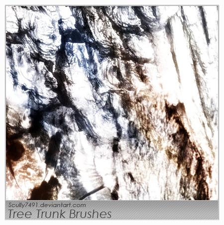 粗糙树干、树皮纹理PS笔刷素材