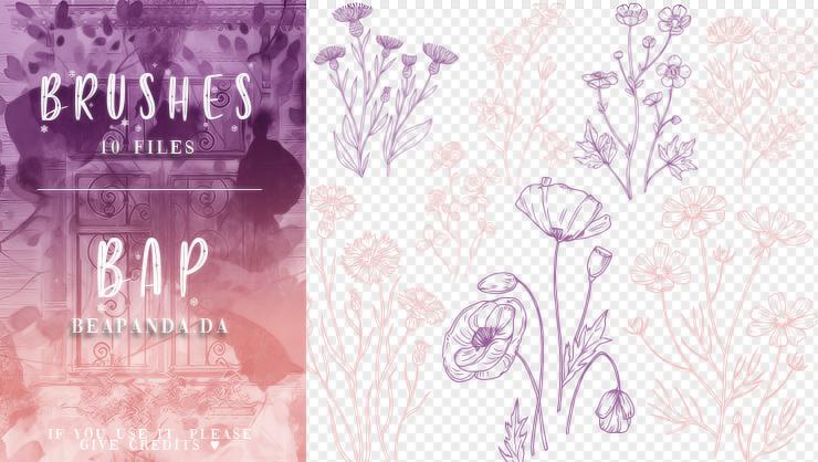 10种植物花纹图案、手绘鲜花花纹PS笔刷素材