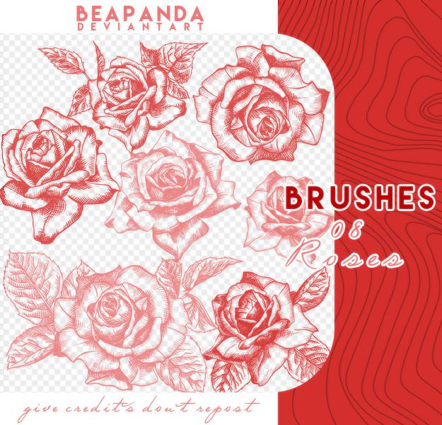 漂亮的精致手绘玫瑰花朵、鲜花花朵图案PS笔刷素材