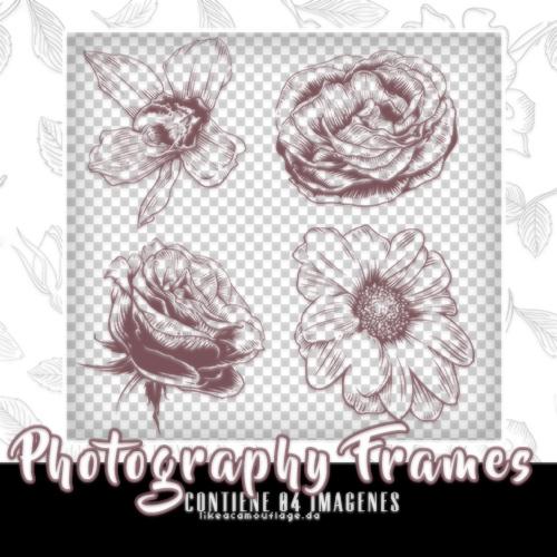 4种手绘花朵、盛开鲜花图案PS笔刷包下载(PNG格式)