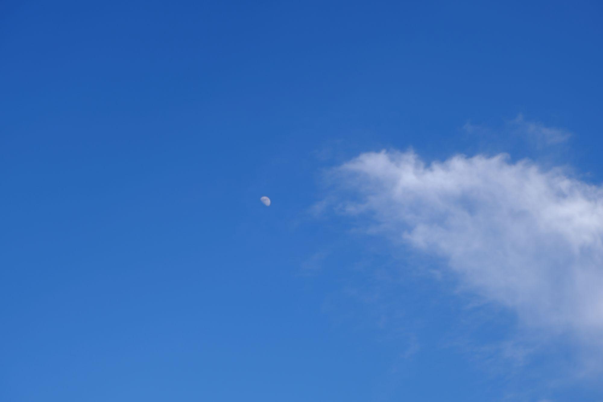 蓝天中的月亮照片 - 正版图片下载