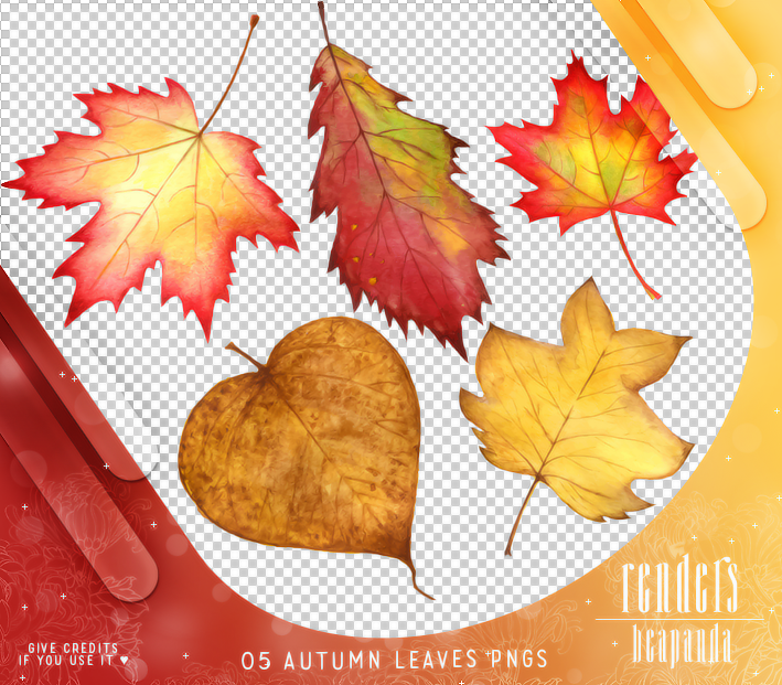 秋天落叶、枫叶、梧桐叶子PS笔刷素材(PNG图片格式)