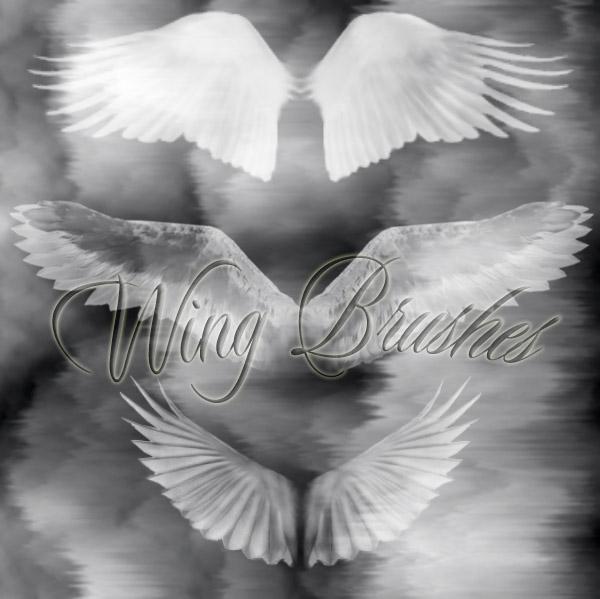 天使翅膀、羽翼翅膀PS笔刷
