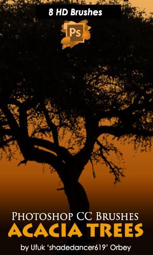 8种高清非洲大树、树木剪影PS笔刷