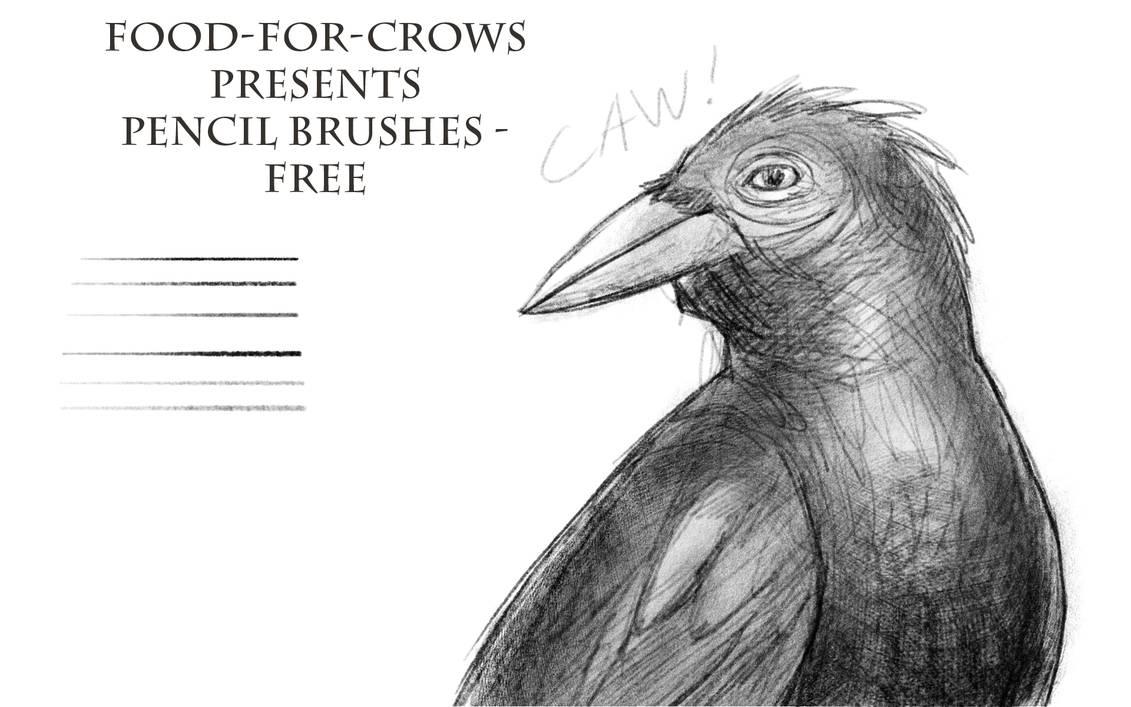 石墨纹理、自然铅笔笔触PS笔刷素材免费下载