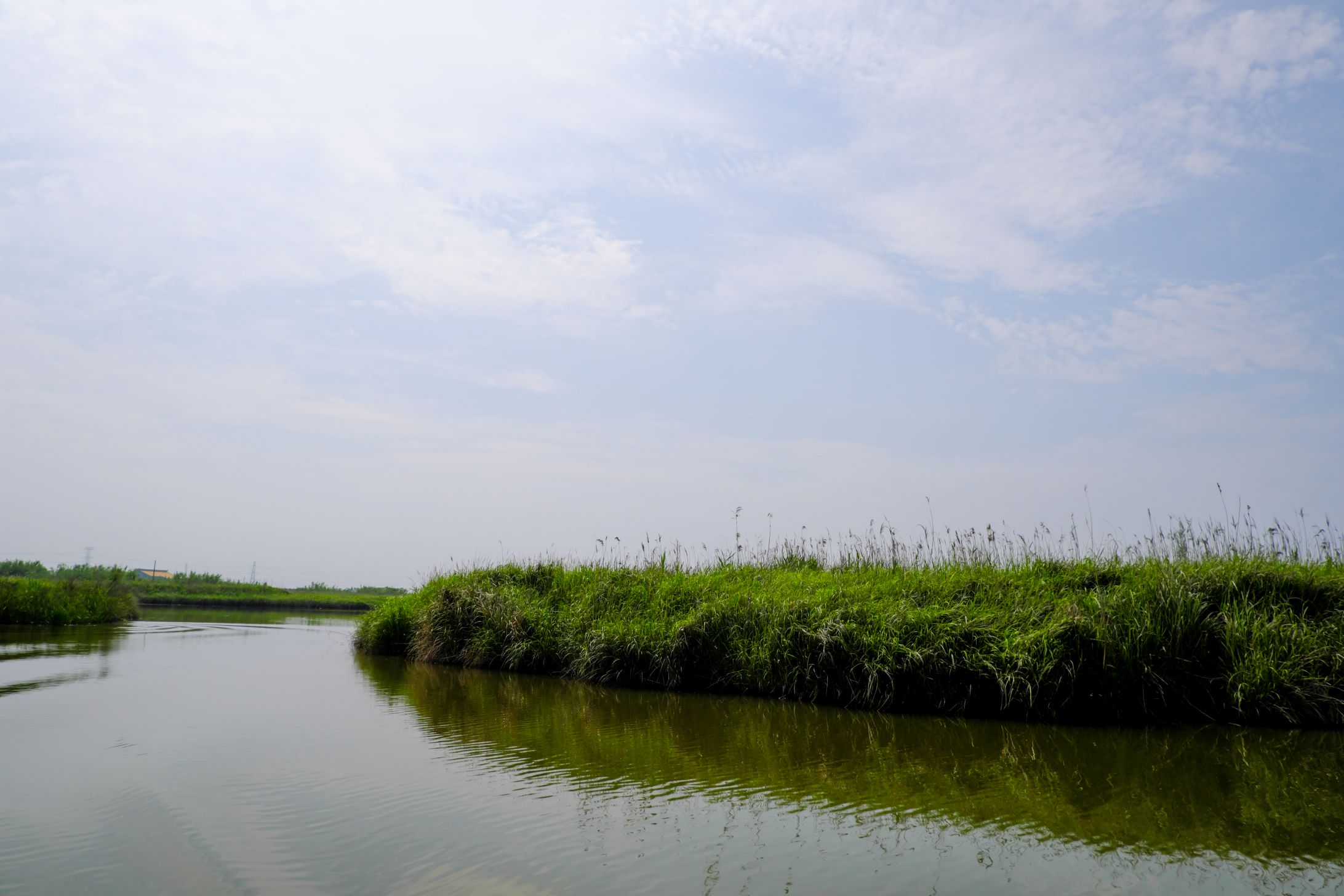 湿地湖面和蓝天高清照片下载