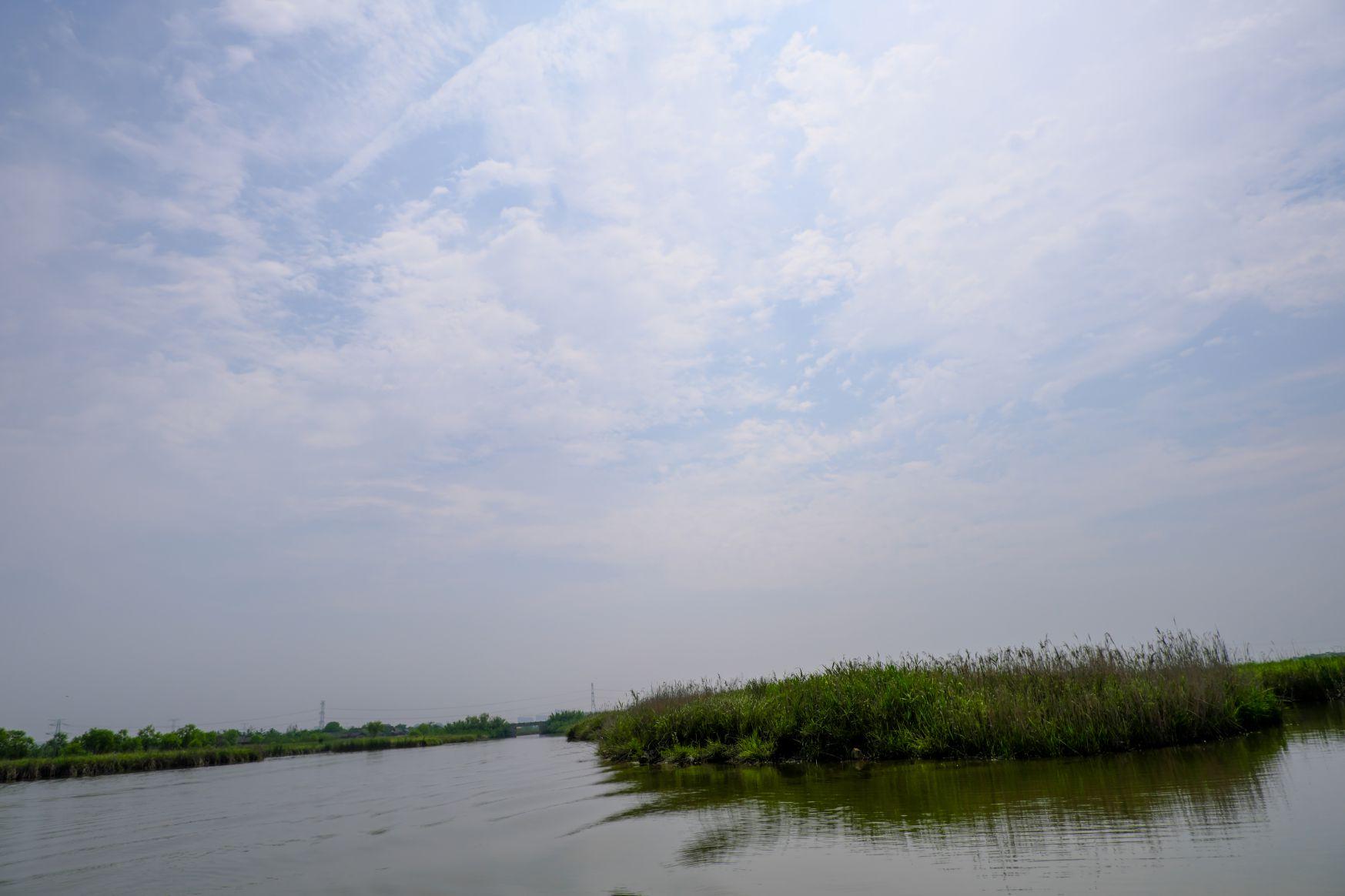 湿地4k照片下载