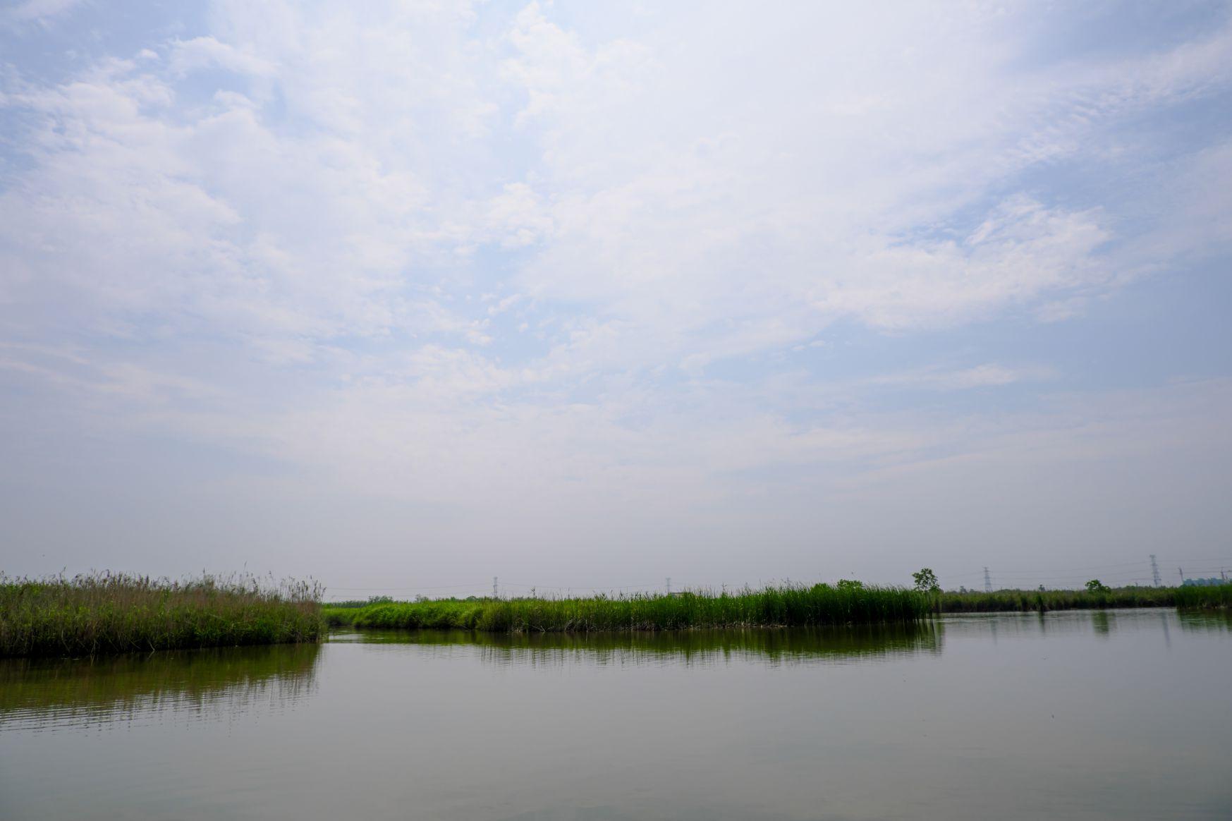 超4K湿地湖边照片下载  -  免费商用