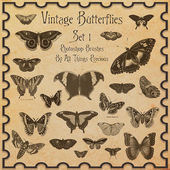 蝴蝶标本PS笔刷
