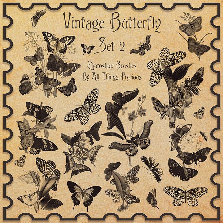 蝴蝶标本图案PS笔刷