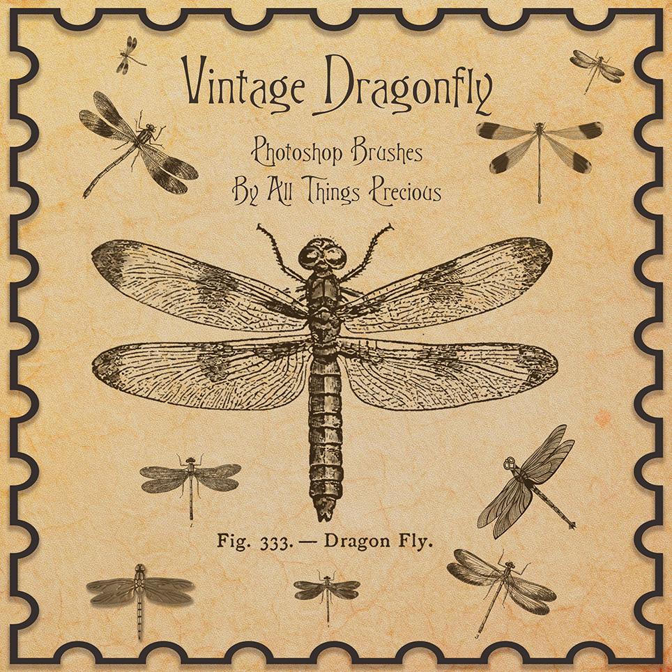 蜻蜓标本图案PS笔刷