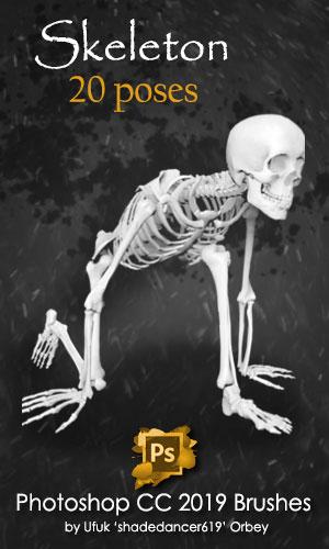20种骷髅头骨架、恐怖人体骨骸PS笔刷