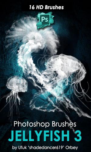16种高清水母Photoshop笔刷素材下载