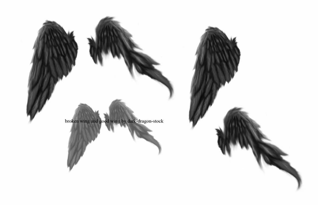 折断的翅膀、折翼天使PS羽毛翅膀笔刷