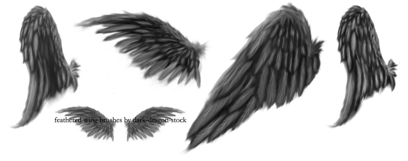 手绘羽翼翅膀、天使翅膀背景PS笔刷素材