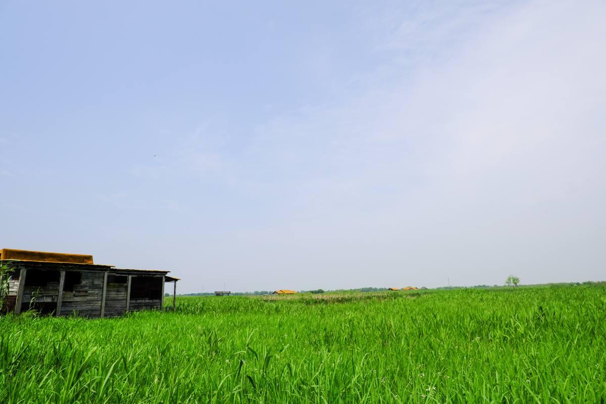 蓝天草地背景照片