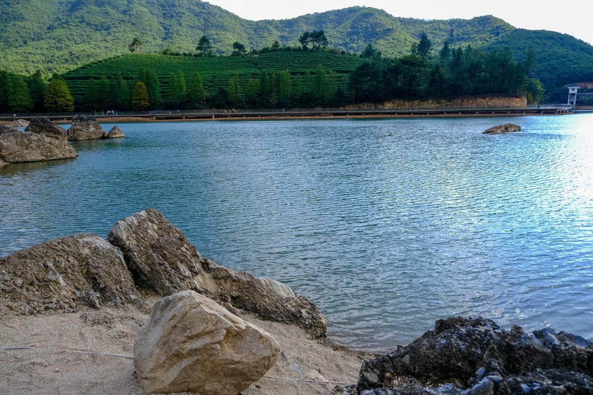 碧绿湖面纹理图片素材