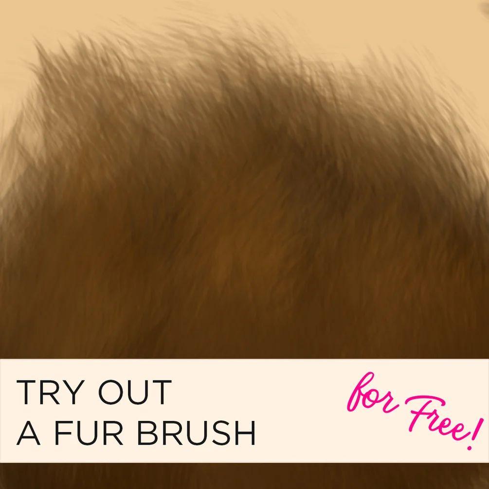 细腻绒毛纹理、毛发材质PS笔刷素材(含.abr文件素材和Procreate文件素材)