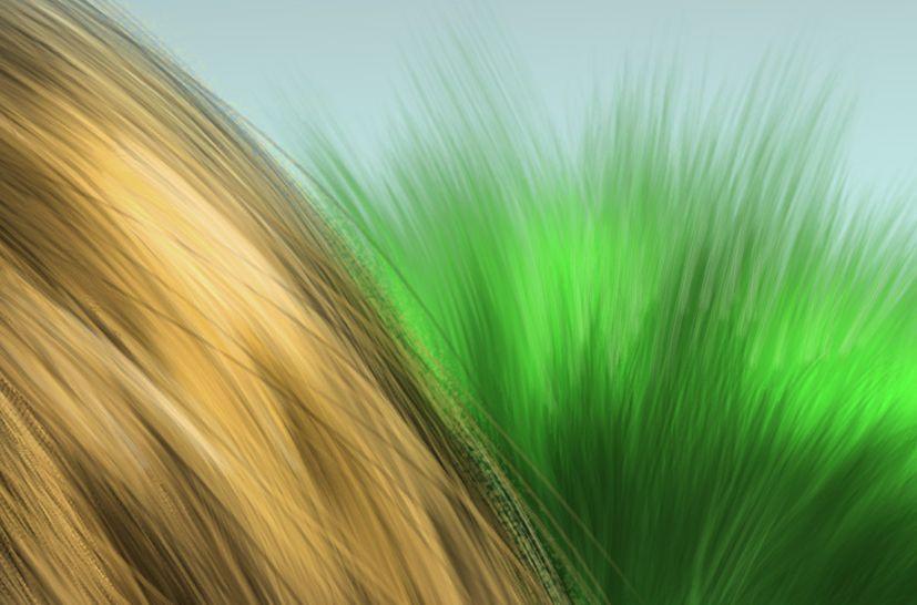 纤细的毛发类、头发类、纤维发束类材质Photoshop CC笔刷素材