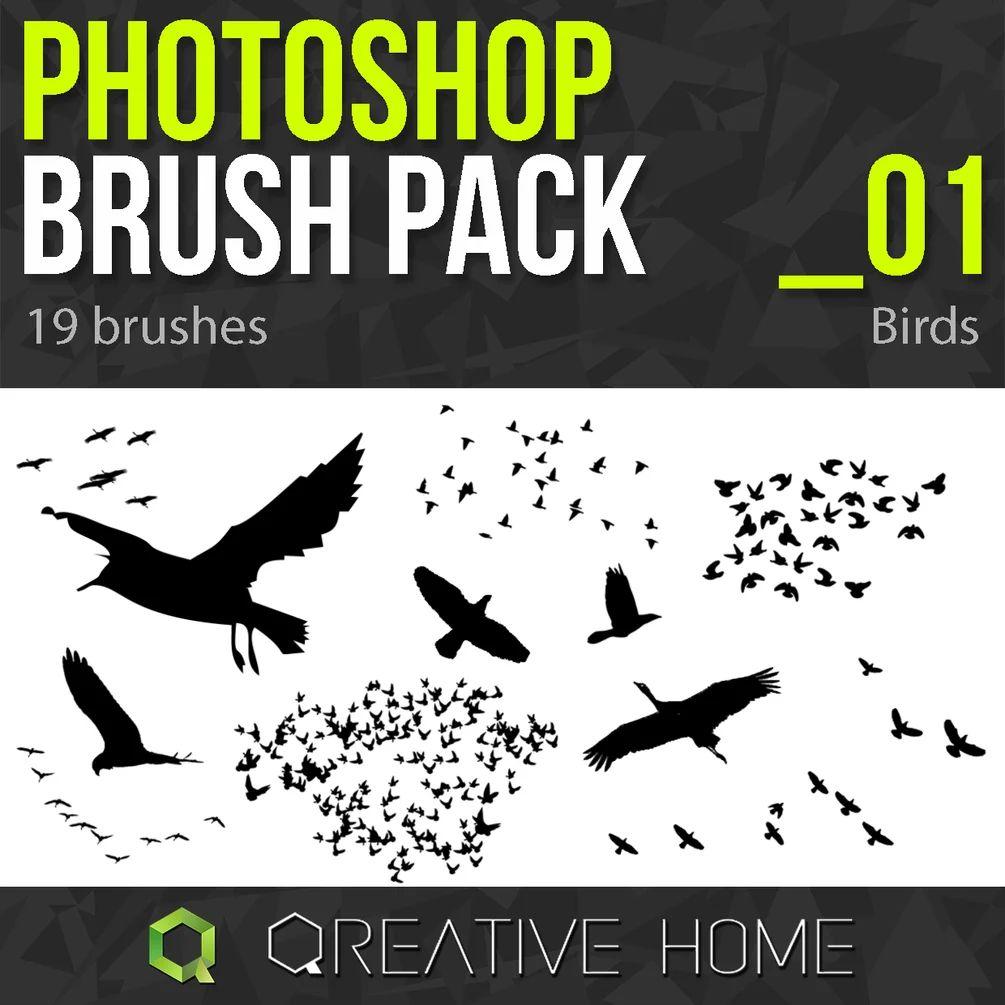 鸟群、天空中的飞鸟剪影背景PS笔刷素材