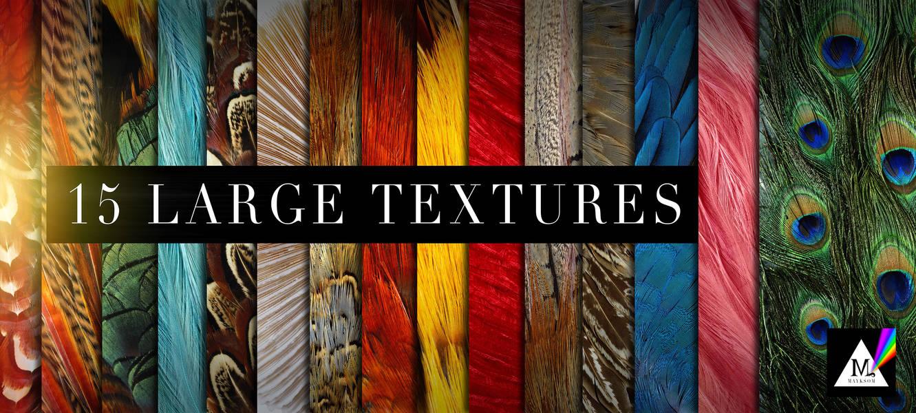 孔雀羽毛、鸟类羽毛材质、飞禽羽毛纹理PS笔刷素材(JPG高清图片)