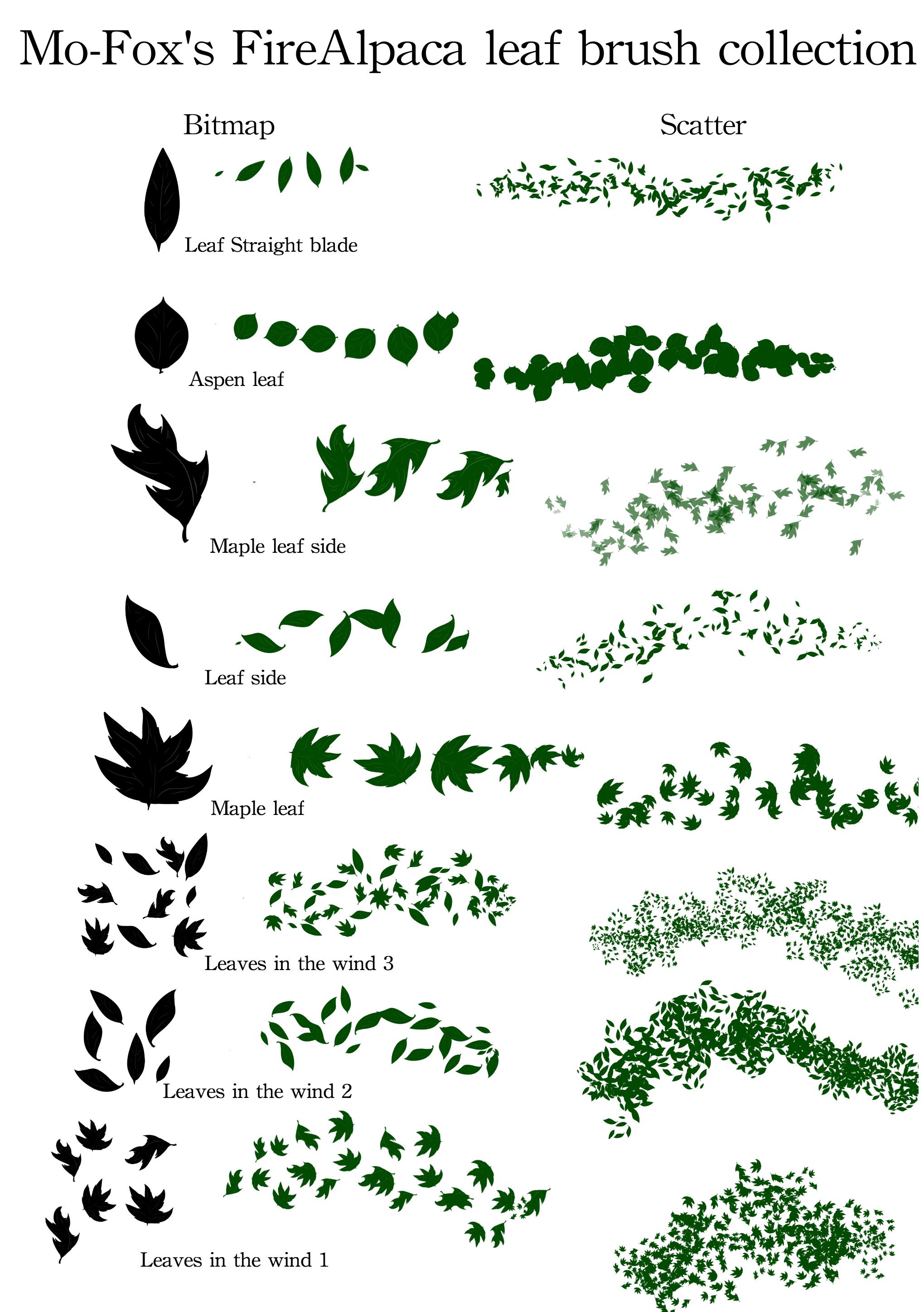 8种树叶、叶子形状PS笔刷素材(PNG图片格式)