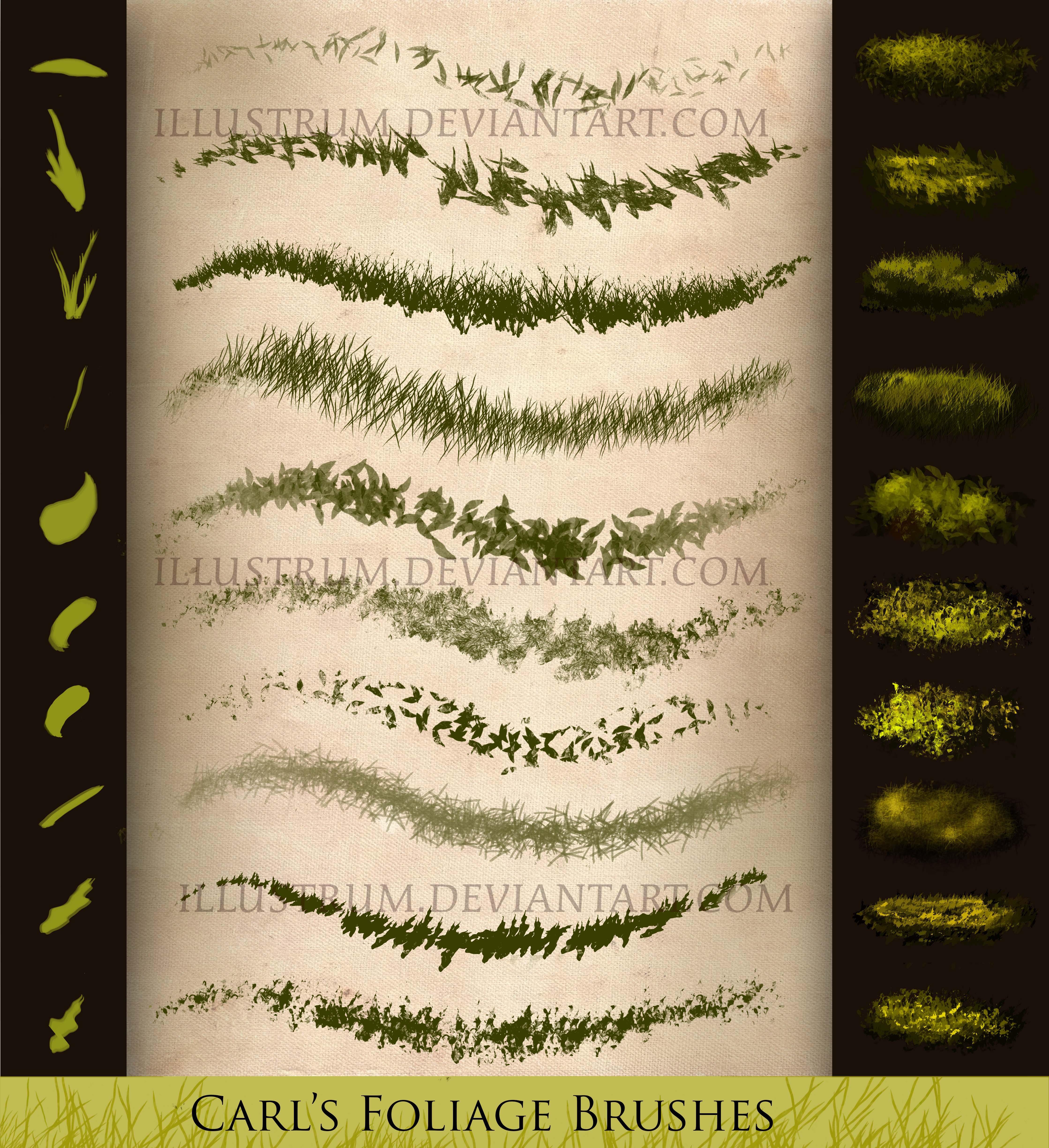 高级青草、草丛、草坪PS笔刷素材