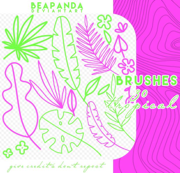 手绘植物叶子、涂鸦树叶PS笔刷素材